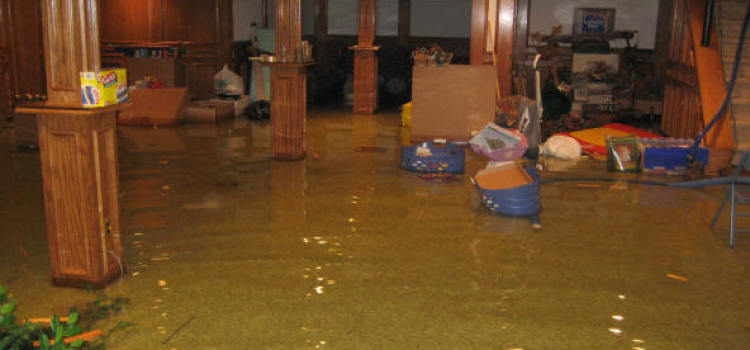 flooded basement grosse ile michigan clean up and restoration