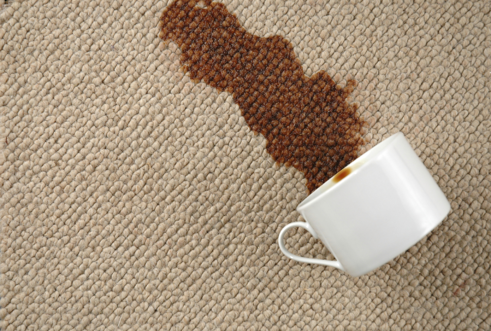 Commercial Carpet Cleaning Taylor Michigan Clean Up And