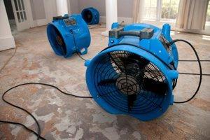 fan dry basement