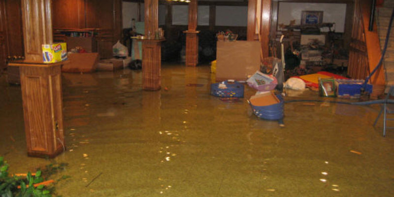 """FLOODED BASEMENT""  GROSSE ILE, MICHIGAN"