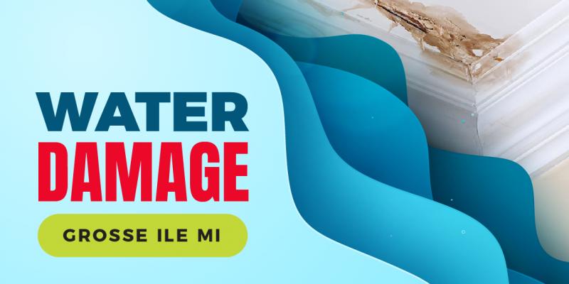 Water damage Grosse Ile Michigan